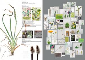 Die-Blume-Plakat